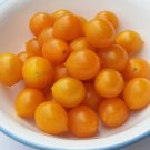 Heirloom YELLOW RIESENTRAUBE Tomato ( Solanum ) - 15 seeds  ~gemsandstems.info~