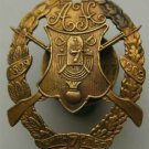 Russian Imperial Silver Badge of the 7th Rifle Regiment, 1908, medal