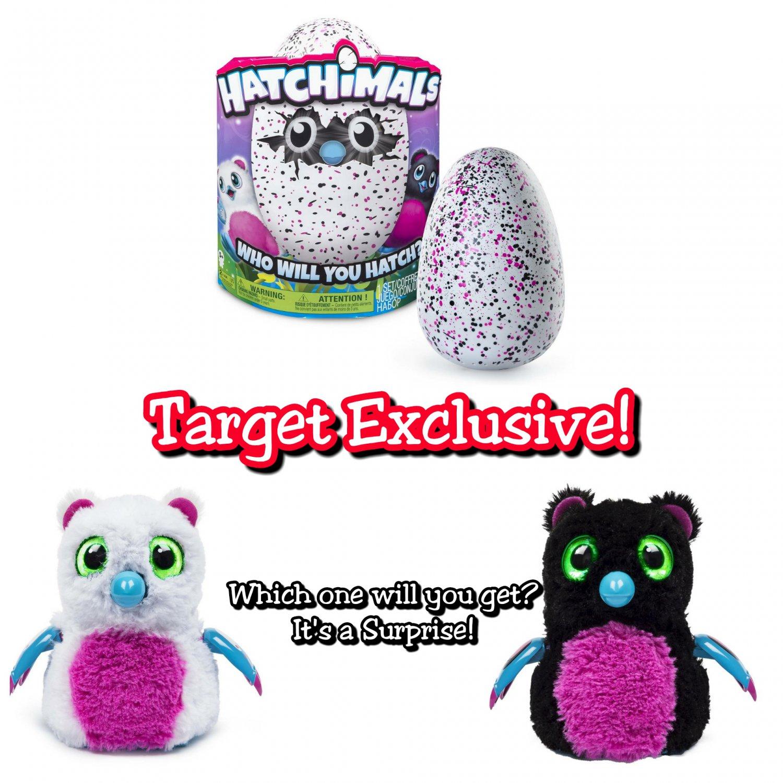 Hatchimals Hatching Egg Bearakeet by Spin Master - Pink/Black - Target Exclusive