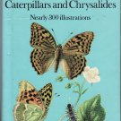 A color guide to familiar Butterflies Caterpillars and Chrysalides