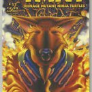 TMNT Teenage Mutant Ninja Turtles #11 (2001 Mirage Series)