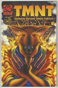 TMNT Teenage Mutant Ninja Turtles #11 (2001 Mirage Series)