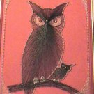 Vintage Framed Owl String Art Embroidery Threads Arts Crafts 1974 Fun Gift