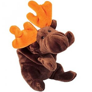 Chocolate The Moose