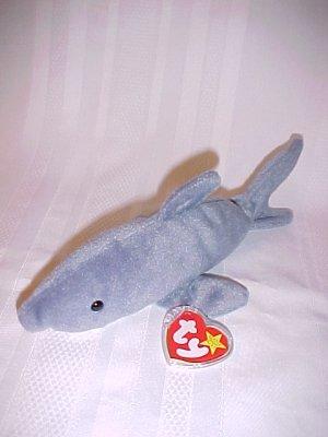 Crunch The Shark