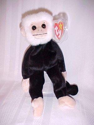 Mooch The Monkey