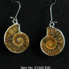 Item No. 01345 Fossil  Earrings in Sterling Setting