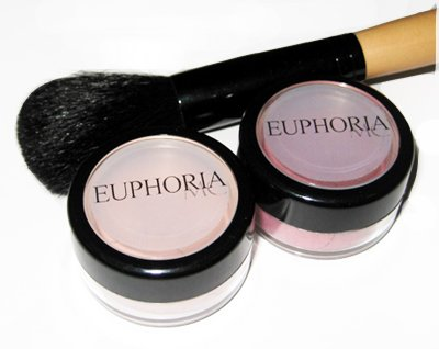 2 Blushes and 1 Blush Brush Set 5% Off