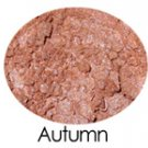 Autumn All Purpose Mineral Powder Sample