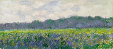 Field of Yellow Irises by Monet - Poster (24x32IN)