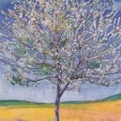 Cherry Tree in Bloom, 1905 - A3 Poster
