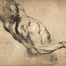 Study of man's torso by Rubens - A3 Poster