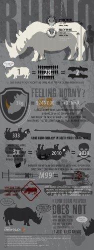 Vinteja charts of - Rhino Poaching - A3 Paper Print