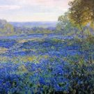 Fields of Bluebonnets, 1920 - 24x18 IN Poster
