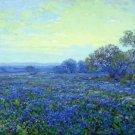 Field of Bluebonnets under Cloudy Sky - 24x32 IN Canvas