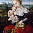 Madonna and Child (about 1525) - 24x18 IN Canvas