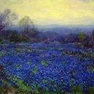 Untitled (aka Field of Bluebonnets) - 24x18 IN Canvas