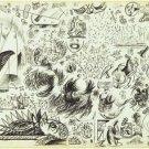 Jackson Pollock - Sheet of Studies - 24x18IN Paper Print