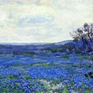 Field of Bluebonnets - A3 Poster