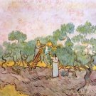 Olive Pickers by Van Gogh - A3 Poster