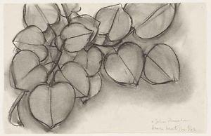 Henri Matisse - Branch of a Judas Tree - A3 Poster