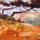 The Bay of Cavalieri - 24x32 IN Canvas