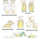 Vinteja charts of - Neck Strain Exercises - A3 Paper Print