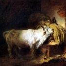 White bull (73 x 91) - 24x18 IN Canvas