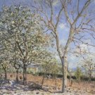 Plum and Walnut Trees in Spring, 1889 - 24x18 IN Poster