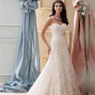 Sexy Long Bride Wedding Dress Backless Champagne Lace A-Line Sweetheart Floor Length Wedding Dress