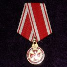 Anna medal or insignia of the Order of St. Anne, 1876  # 10766