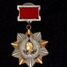 Kutuzov I Degree Order suspended #10585