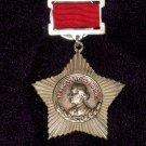 Suvorov of III degree Order of the suspension #101024