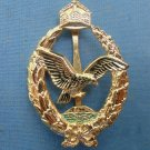 WW II THE GERMAN BADGE LW WH Sign Marine pilots and observers. gilding