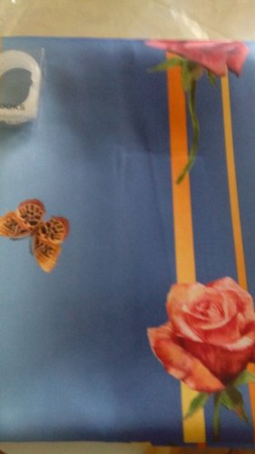 """Shower Curtain Blue Roses Stripe Butterfly 72""""x72"""" Liner & Hooks by """"Catalina"""