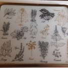 vtg 70s Retro Herbs Vance Surface Saver Countertop Trivet Cutting Board