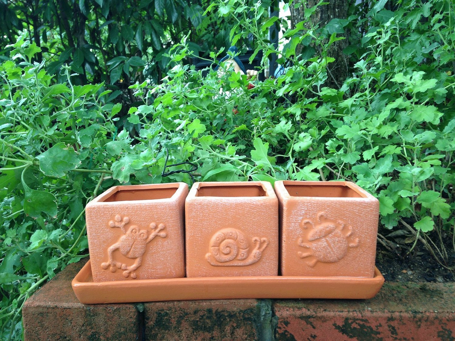 Terra Cotta Clay Set of 3 Small Square Embossed Earthenware Planters with tray