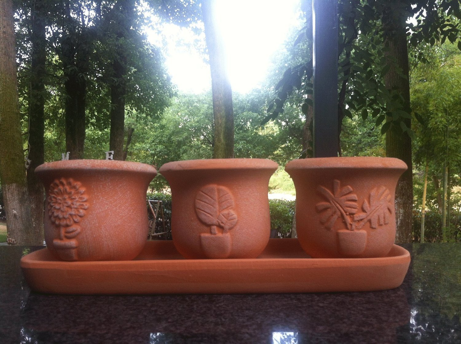 Terra Cotta Clay Set of 3 Small Embossed Earthenware Planters with Tray