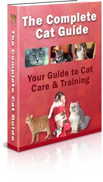 Complete Cat Guide