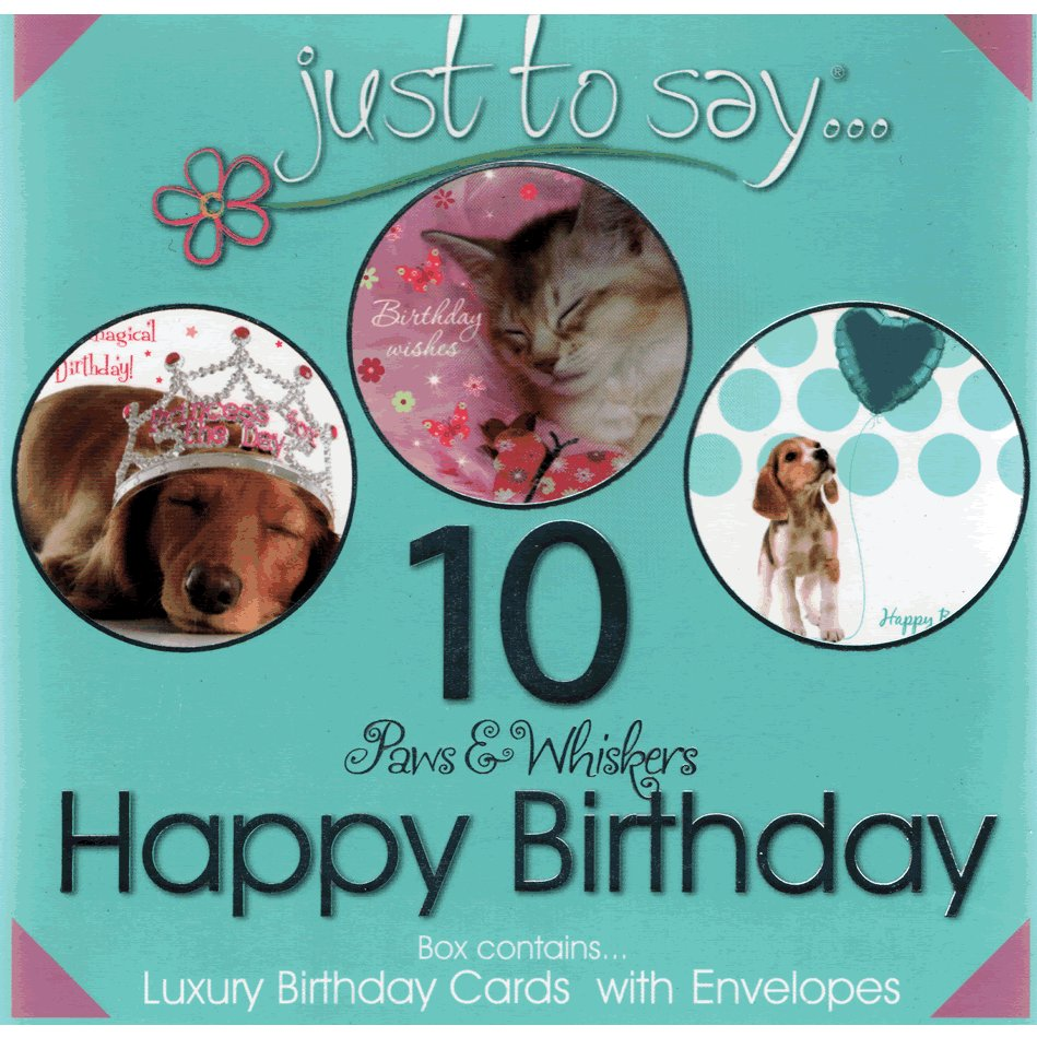 Paws & Whiskers Happy Birthday Cards - Boxed Set of 10 Notecards and Envelopes