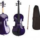 New 4/4 Full Size Student Violin With Case, Bow and Rosin~Purple