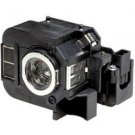 V13H010L50 Epson Projector Lamp Assembly-2pack