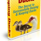 Keeping Ducks - The Secret to Successfully Raising & Keeping Ducks - Ebook