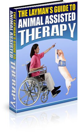 The Layman's Guide to Animal Assisted Therapy - Ebook