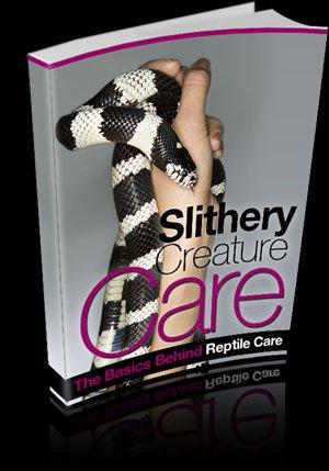 Slithery Creature Care - Ebook