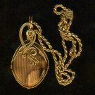 14Kt wire wrapped Petrified Wood Pendant