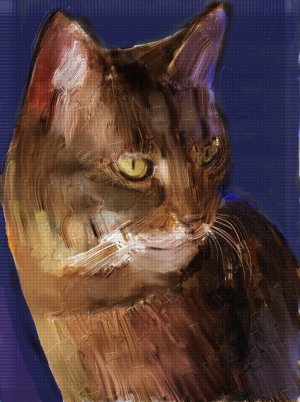 Cat Greeting Card - 8 5-inch x 7-inch oil painted greeting cards w 8 envelopes (blank inside)