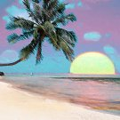 Amazing Sunset in Tropical Paradise - Greeting Cards - box of 8 5-inch by 7-inch cards