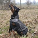 On Sale: (S/M) Dog Rain Jacket / All-Year Jacket, 13-3/4, Black Weather Resistant