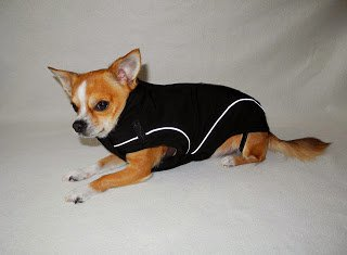 "On Sale: (S) Warm Dog Winter Jacket w/ Fleece Lining, 12"", Brown"
